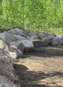 Pihaa reunustavat kivet odottavat sammalleimun kukkaloistetta rinnalleen.